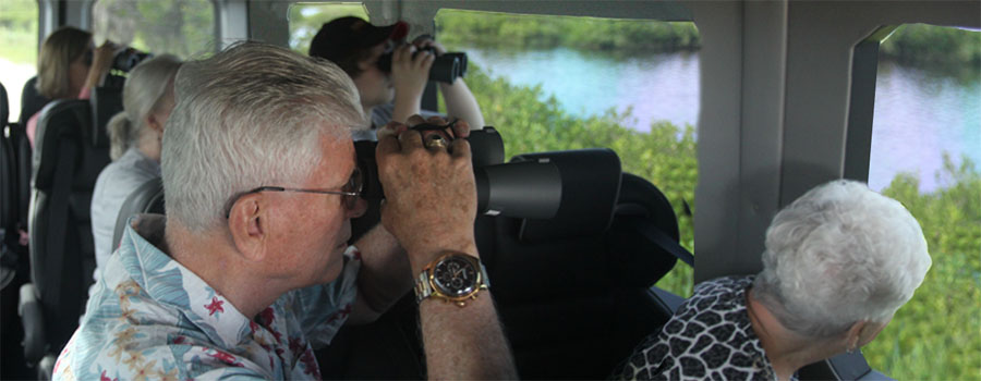 Canaveral Wildlife Tours